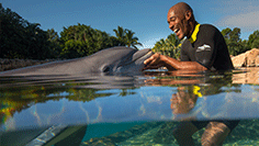 Discovery Cove Book Your Day