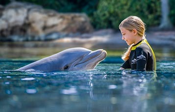 Upgrade to a Photo Package during your day at Discovery Cove Orlando