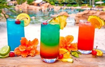 Upgrade to a Premium Drink Package during your day at Discovery Cove Orlando
