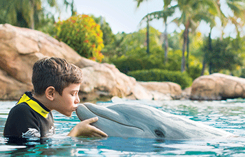 Upgrade to a Photo Package for your day at Discovery Cove Orlando