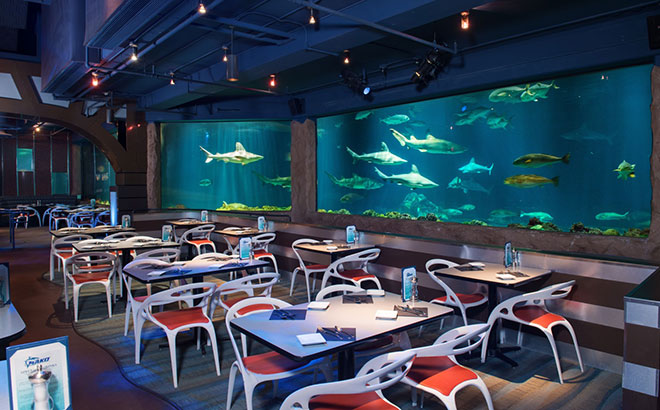 The view at Sharks Underwater Grill is unlike any other dining experience