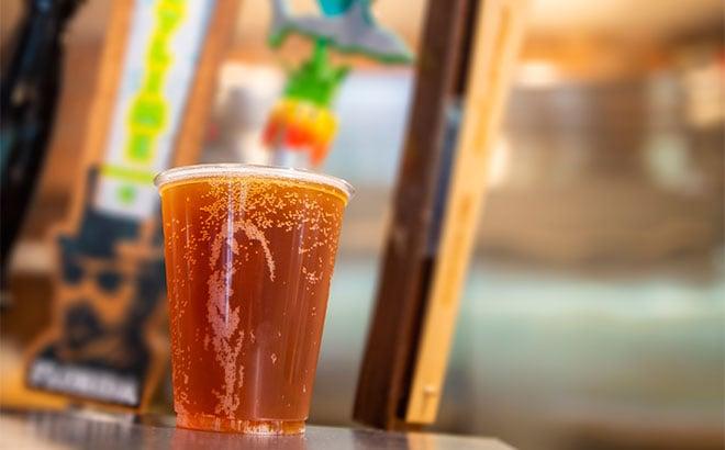 Beer at SeaWorld