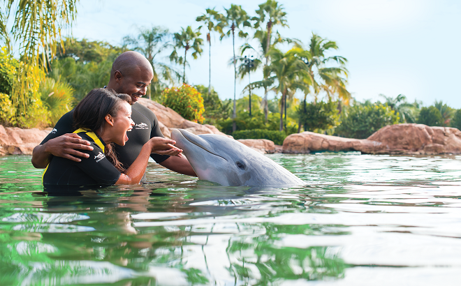 Discovery Cove Trainer for a Day