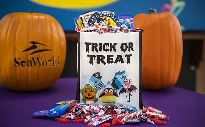 Halloween Spooktacular Candy Bag