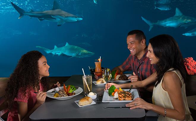 Sharks Underwater Grill at SeaWorld Orlando
