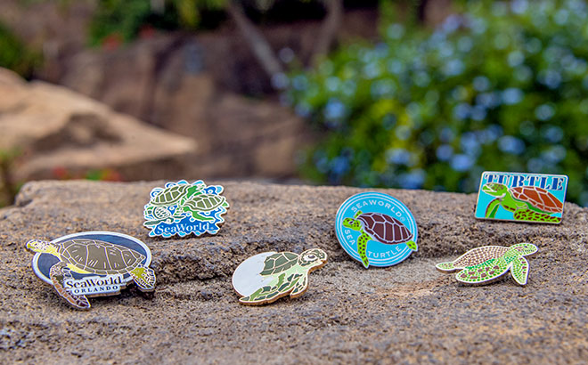 Turtle Pins