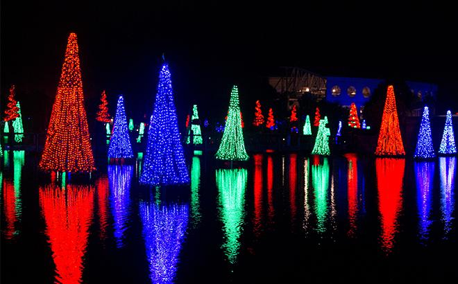 Sea of Trees at SeaWorld Orlando