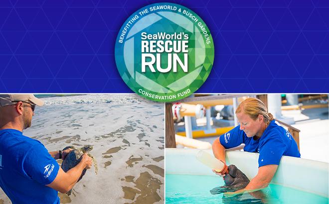SeaWorld's Rescue Run
