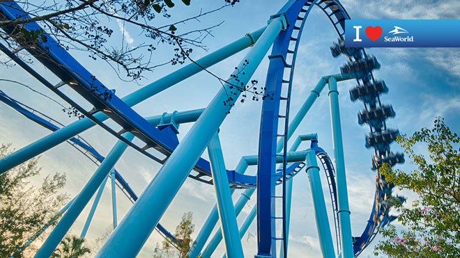 Manta Roller Coaster Loop Virtual Conferencing Background Preview