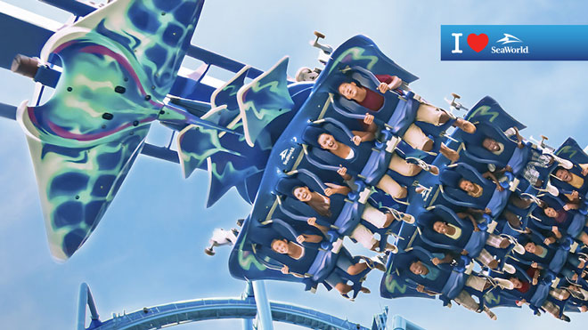 Manta Roller Coaster Train Virtual Conferencing Background Preview