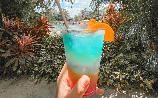 Specialty drinks at Discovery Cove Orlando
