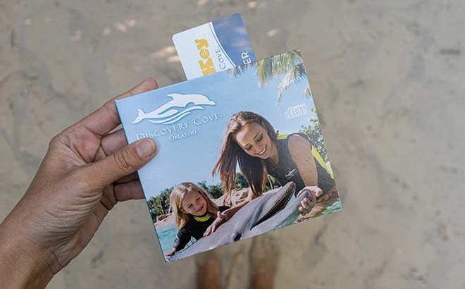 Buy a photo package of your experience at Discovery Cove Orlando