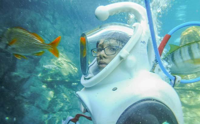 SeaVenture at Discovery Cove Orlando