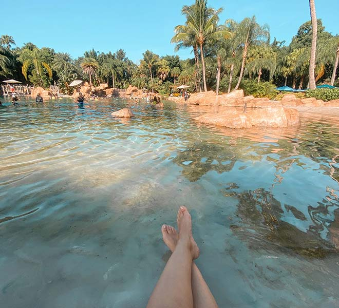 Relax at Discovery Cove Orlando