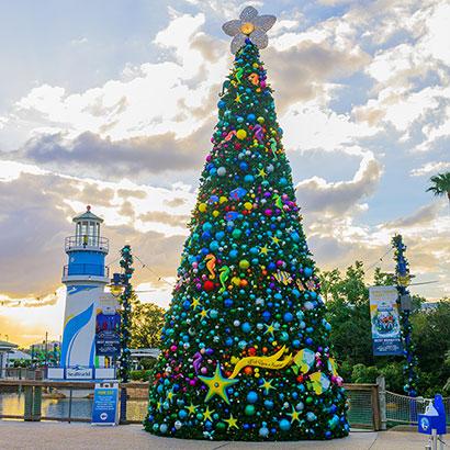 Christmas Trees at SeaWorld Orlando