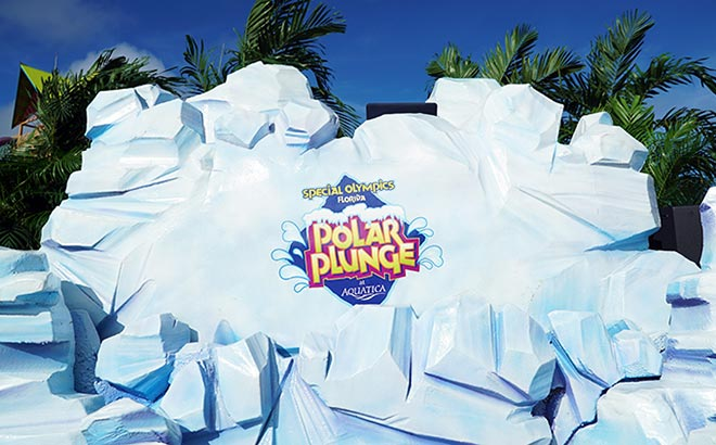 Polar Plunge at Aquatica Orlando