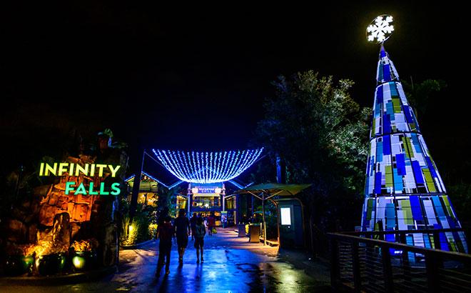 Christmas Lights at SeaWorld Orlando