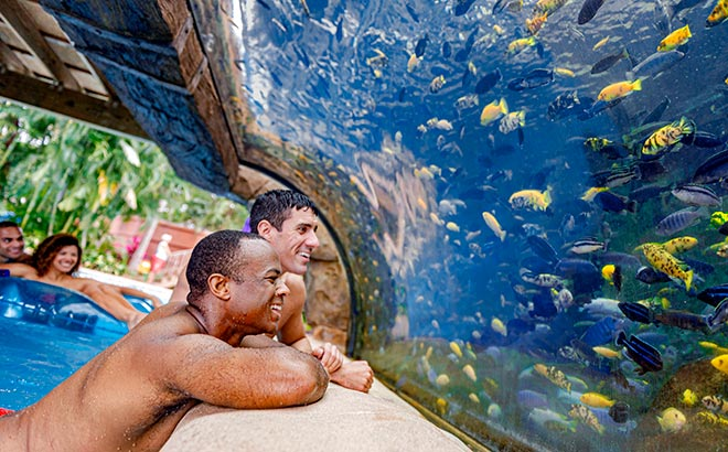 Float through the Fish Grotto at Aquatica Orlando