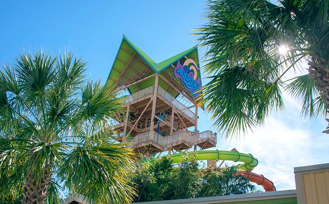 Experience the drop tower water slide at Aquatica Orlando