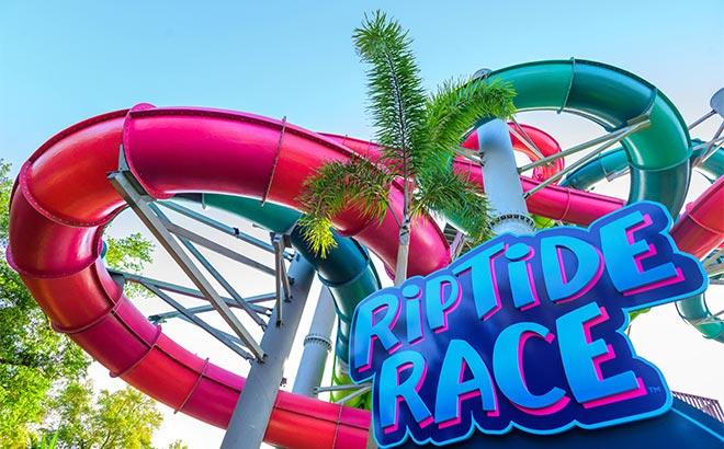 Riptide Race at Aquatica Orlando