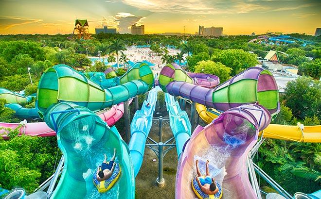 Pass Member Slide Night at Aquatica Orlando