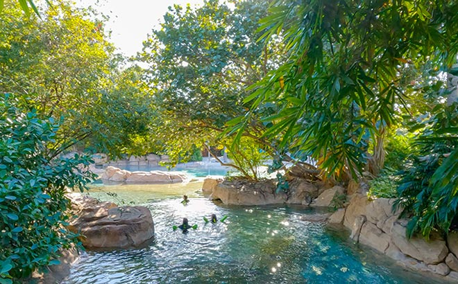 35 Acres of Tropical Oasis at Discovery Cove in Orlando Florida