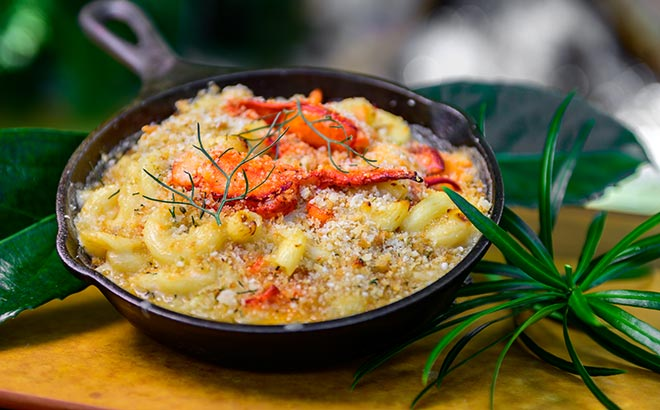 Lobster Mac and Cheese available during SeaWorld Seven Seas Food Festival