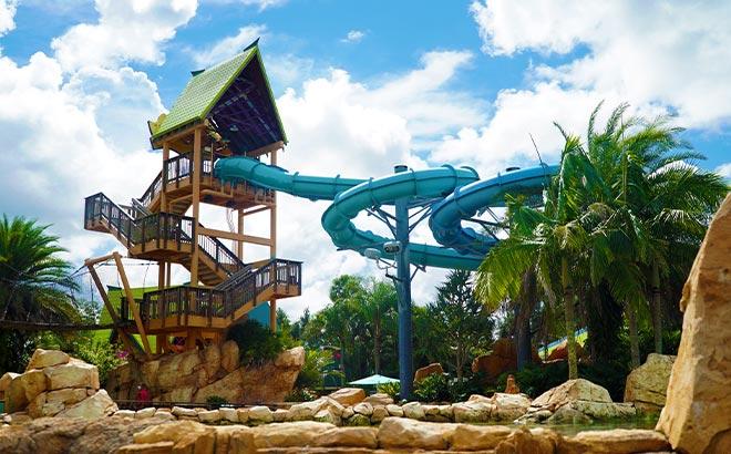 Dolphin Plunge at Aquatica Orlando