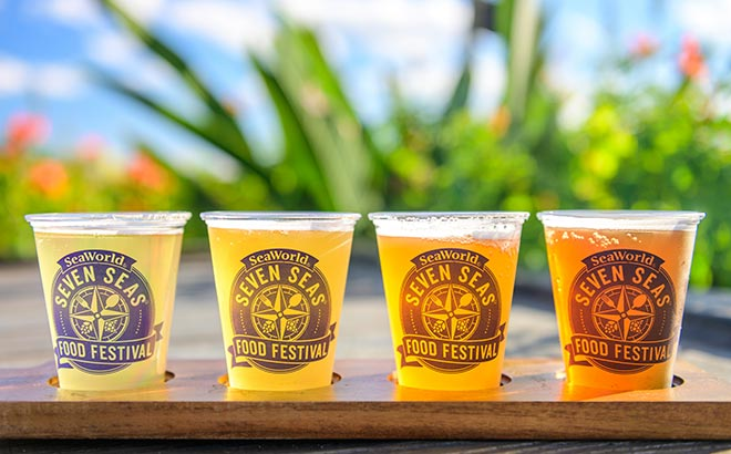 Beer Flight at Seaworld Seven Seas Food Festival