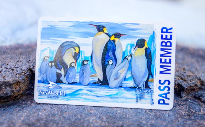 Pass Member Card with Guy Harvey Penguin Design