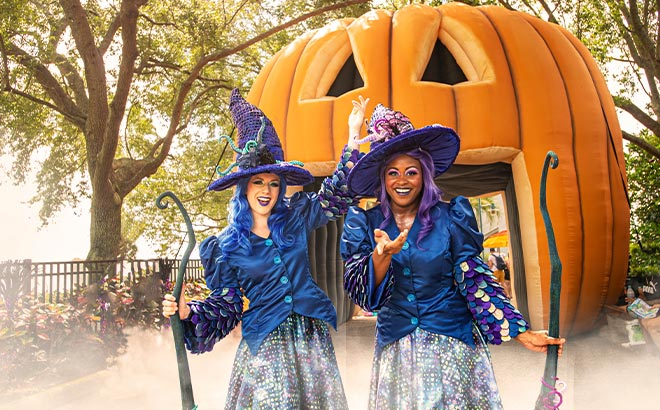 SeaWorld Orlando Halloween Spooktacular Witches