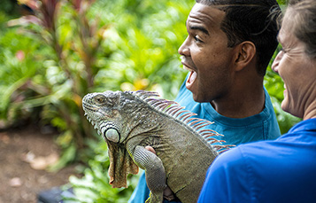 Chase Alvarez and Moonbean (Green iguana)