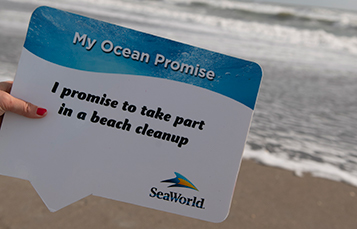 Ocean Promise Pledge Sign at Pass Member Beach Cleanup