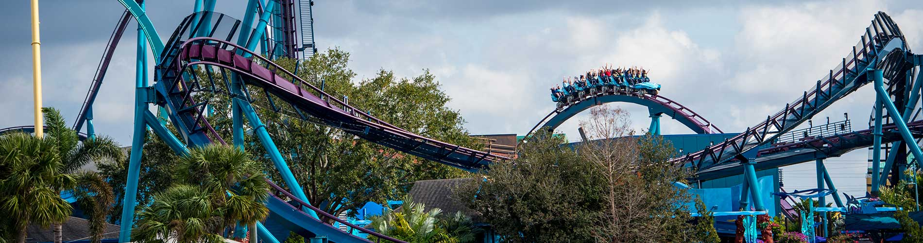 Wide show of Mako at SeaWorld Orlando