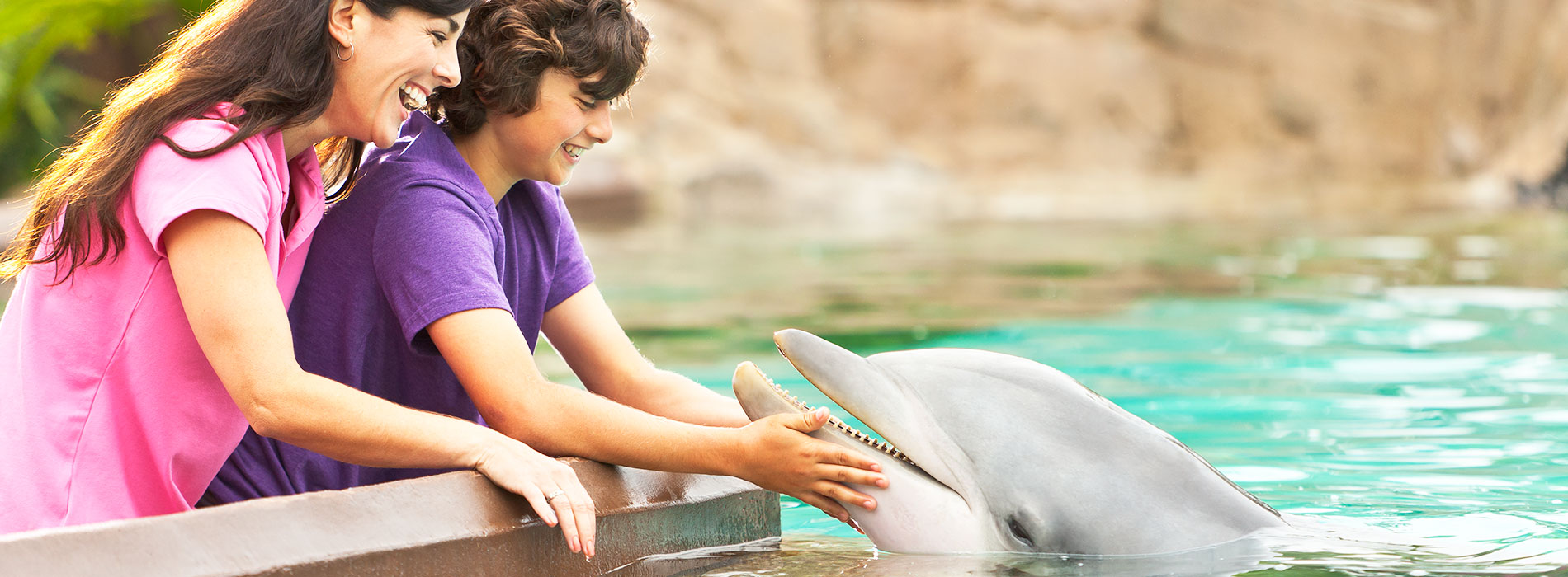Free Teacher Card to visit SeaWorld Orlando