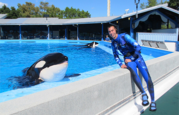 Students can interact with SeaWorld trainers during live video calls.