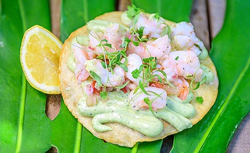 Drunken Shrimp Tostada