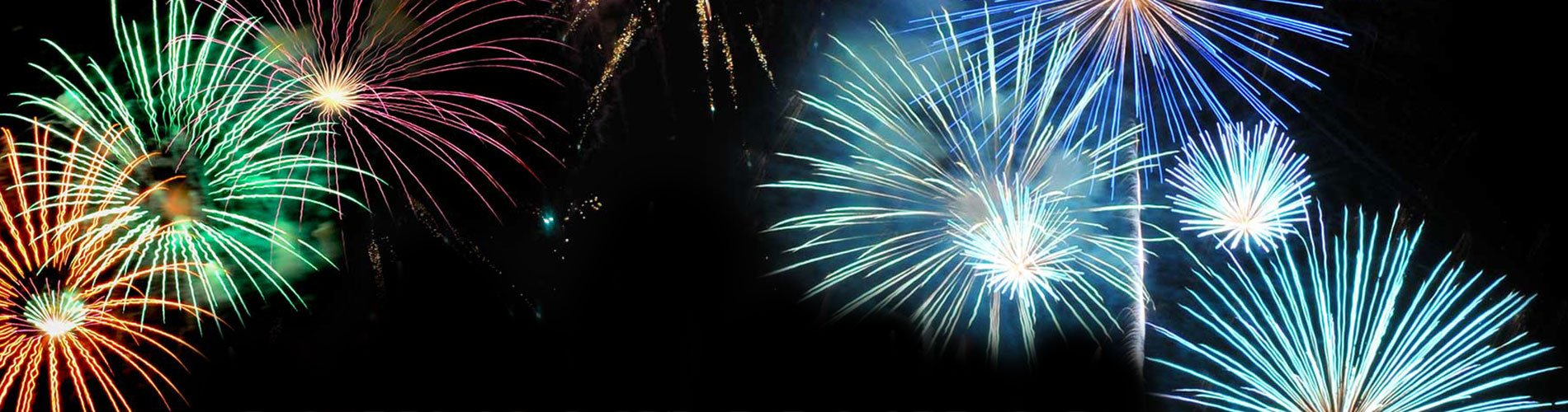 New Year's Eve Event – Spectacular Fireworks | SeaWorld Orlando