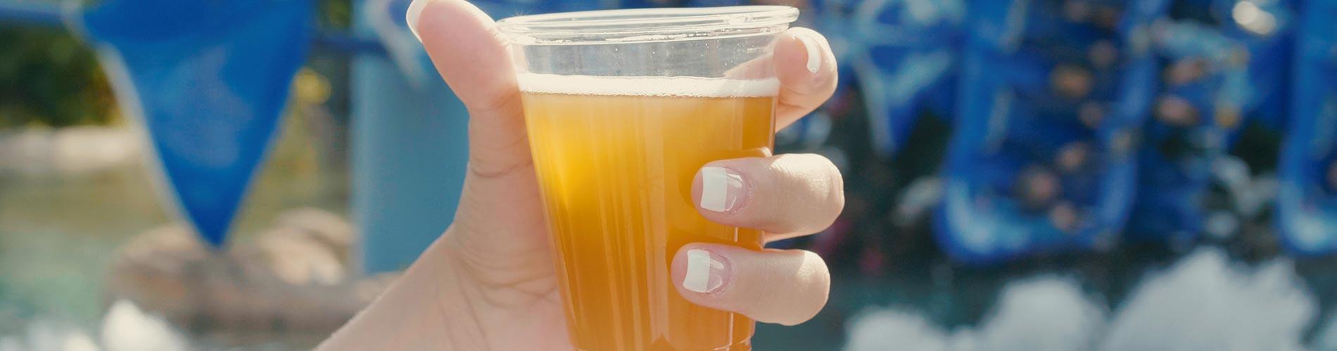 Free Beer Summer at SeaWorld Orlando