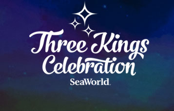 3 Kings Day Celebration