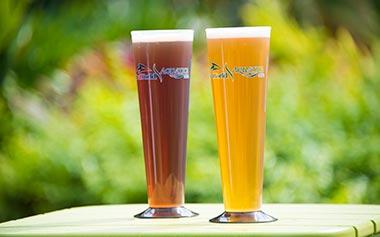 Beers during SeaWorld Orlando Seven Seas Food Festival