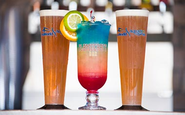 Flamecraft Bar Beverages at SeaWorld Orlando