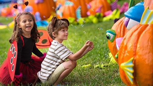Halloween Spooktacular Pumpkin Garden
