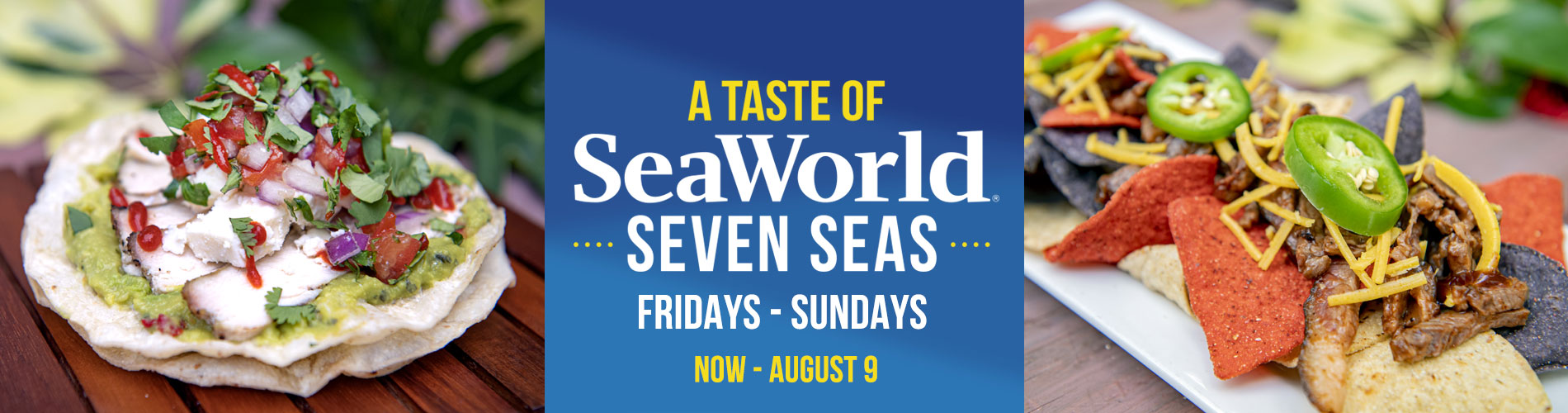 A Taste of SeaWorld Seven Seas Event at SeaWorld Orlando