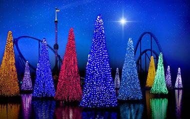 Holiday Parties at SeaWorld Orlando