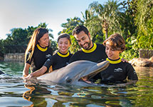 Discovery Cove Orlando Dolphin Interactions