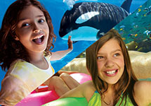 Enjoy a 2 park vacation package to both SeaWorld and Aquatica