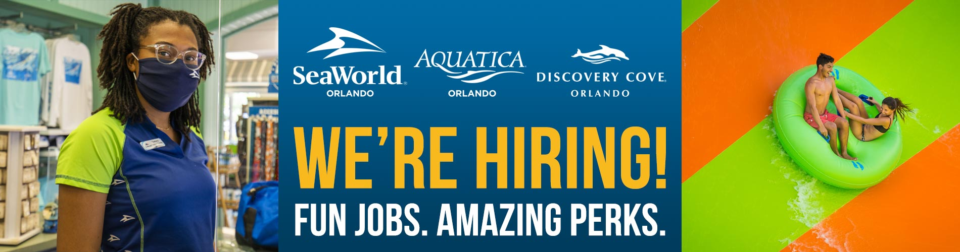 Fun Jobs and Amazing Perks at SeaWorld Aquatica Discovey Cove Orlando
