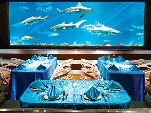 SeaWorld Craft Beer Pairing Dinner