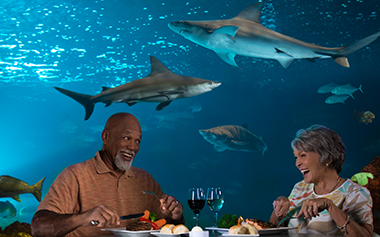 Sharks Underwater Grill Priority Seating